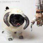 Avatar of Chubbs The Wampug